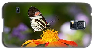 Piano Key Butterfly Galaxy S5 Case