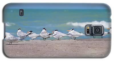 All In A Row Galaxy S5 Case