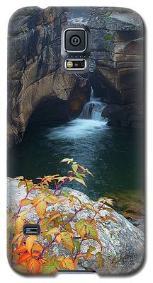 Autumn At The Grotto Galaxy S5 Case