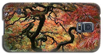 Autumn's Fire Galaxy S5 Case