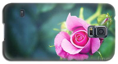 Raspberry Galaxy S5 Cases