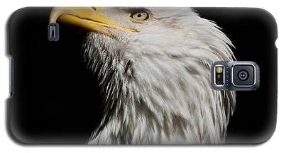 Bald Eagle Looking Skyward Galaxy S5 Case