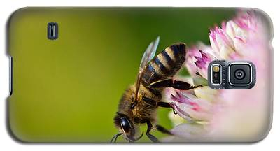 Bee Sitting On A Flower Galaxy S5 Case