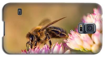 Bee Sitting On Flower Galaxy S5 Case