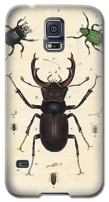 Minotaur Galaxy S5 Cases