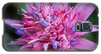 Blooming Bromeliad Galaxy S5 Case