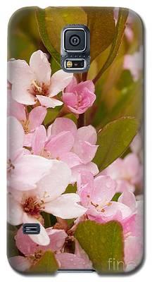 Blossoms Of The Rain Galaxy S5 Case