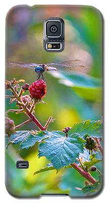 Blue Dragonfly On Berry Galaxy S5 Case