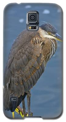 Blue Herron Galaxy S5 Case