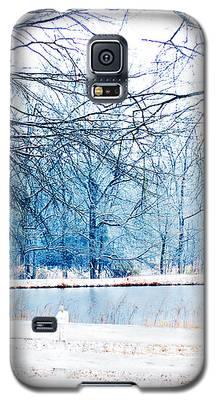 Blue Winter Galaxy S5 Case
