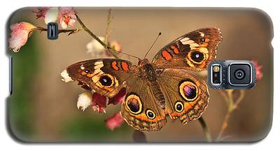 Butterfly On Pink Galaxy S5 Case