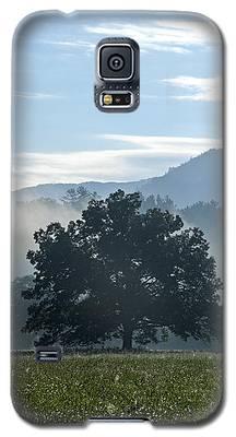 Cades Cove Tree  Galaxy S5 Case