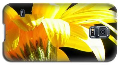 Canopy Of Petals Galaxy S5 Case