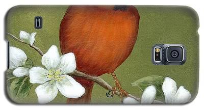Cardinal And Dogwood Galaxy S5 Case