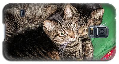 Cats Cuddling Galaxy S5 Case