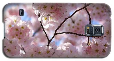 Cherry Blossoms And Blue Sky-1 Galaxy S5 Case