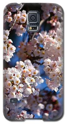 Cherry Blossoms And Blue Sky-2 Galaxy S5 Case