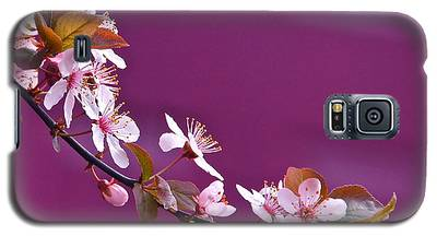 Cherry Blossoms And Plum Door Galaxy S5 Case