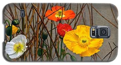 Colorful Poppies And White Willow Stems Galaxy S5 Case