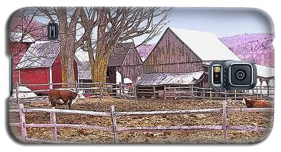 Cows At Jenne Farm Galaxy S5 Case