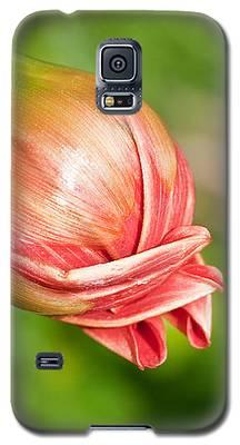 Dahlia Bud Galaxy S5 Case