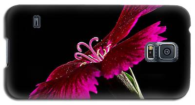 Dianthus Galaxy S5 Case