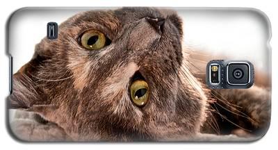 Flirting Galaxy S5 Case