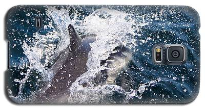 Dolphin Splash Galaxy S5 Case