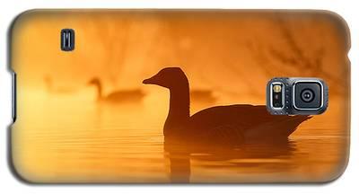 Goose Galaxy S5 Cases