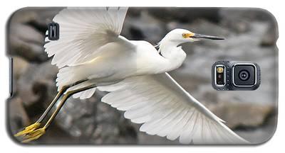 Egret Flight Galaxy S5 Case