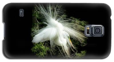 Elegance Of Creation Galaxy S5 Case