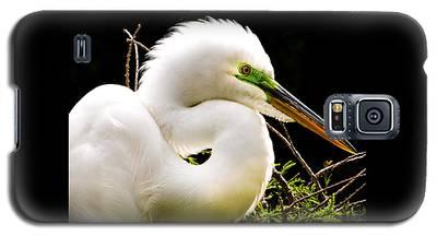 Essence Of Beauty Galaxy S5 Case