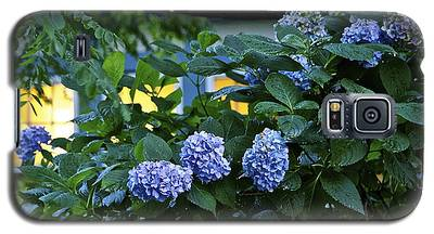 Evening Hydrangeas Galaxy S5 Case