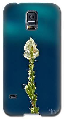 Faith Is Peace Galaxy S5 Case