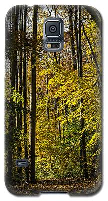 Fall Walk In The Woods Galaxy S5 Case