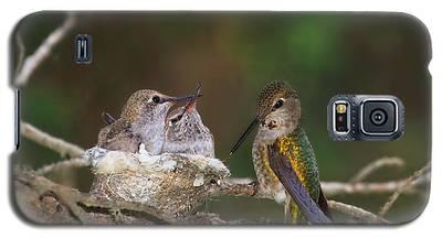 Family Love Galaxy S5 Case
