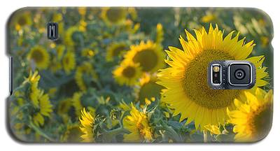 Field Of Happiness Galaxy S5 Case