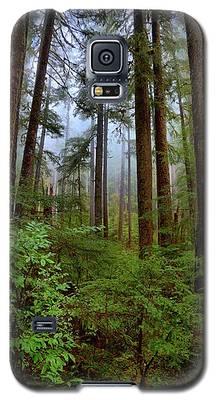 Forest Mist Galaxy S5 Case