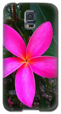 Fuschia Plumeria Bloom Galaxy S5 Case