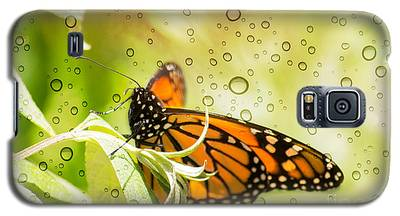 Glorious Monarch 3 Galaxy S5 Case