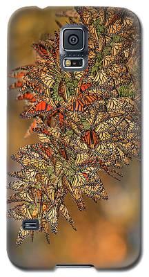 Golden Cluster Galaxy S5 Case