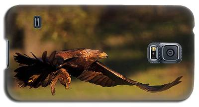 Golden Eagle On The Hunt Galaxy S5 Case