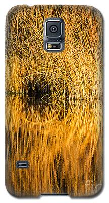 Golden Reflections Galaxy S5 Case