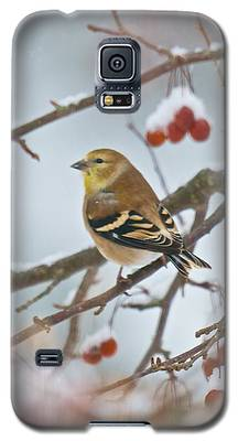 Goldfinch In Snow Galaxy S5 Case