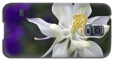 Goldilocks And The Bells Galaxy S5 Case