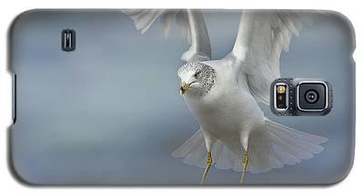 Heavenly Galaxy S5 Case