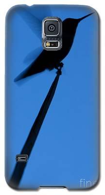 Hummingbird Silhouette Galaxy S5 Case