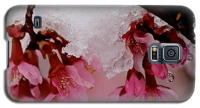 Icy Cherry Blossoms Galaxy S5 Case