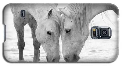 White Horse Galaxy S5 Cases
