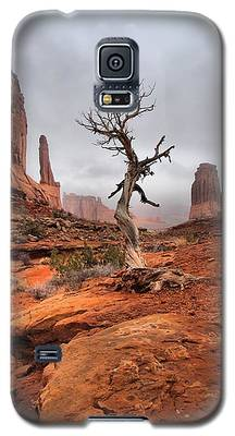 King's Tree Galaxy S5 Case
